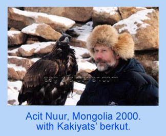 Mongolian Golden Eagle