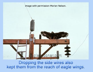 Pylon modifcations for eagles