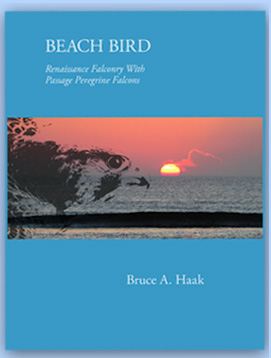 Beach Bird Book Bruce Haak