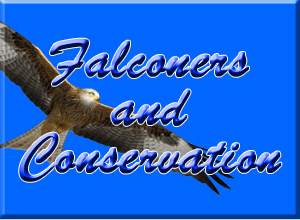 Falconer Conservation