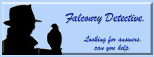 Falconry Detective at eaglefalconer