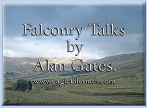 Falconry Talk by Alan Gates