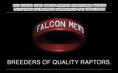 Falcon Mews Raptor breeders