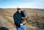 Bruce Haak, Idaho falconer