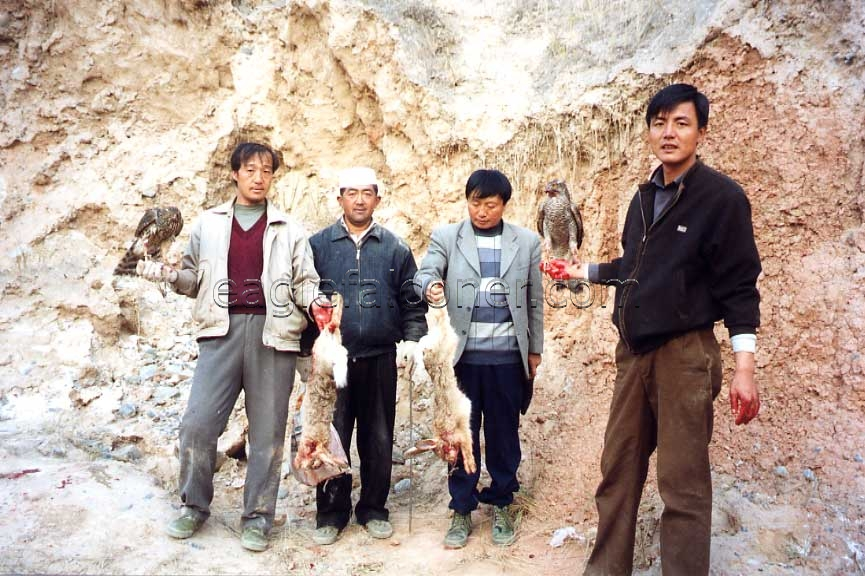 Chinese falconers with goshawks