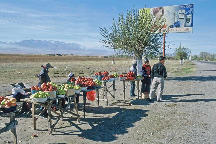 Kyrgyz apple sellers